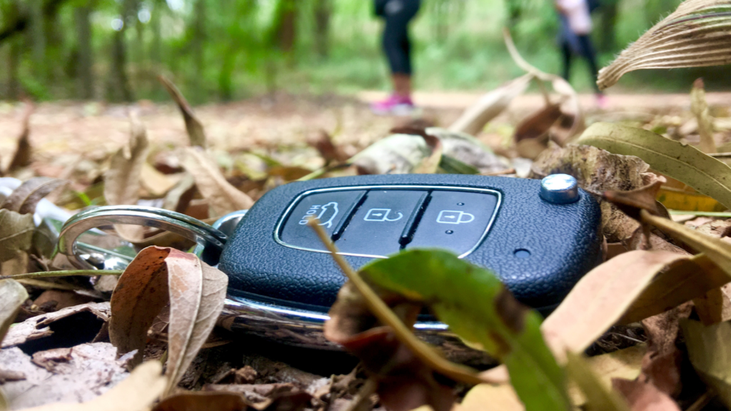 lost car keys in forest